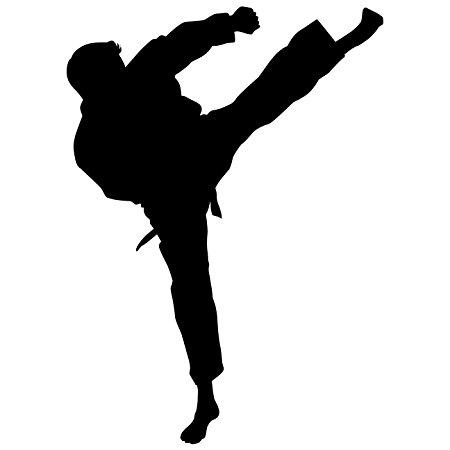 450x450 Martial Arts Wall Decal Sticker 38