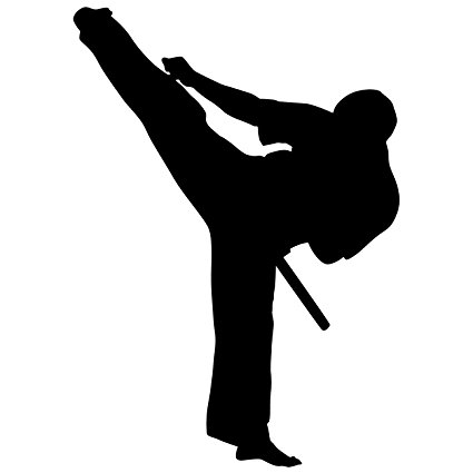 425x425 Martial Arts Wall Decal Sticker 42