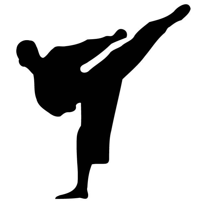 660x660 Karate Kick Silhouette