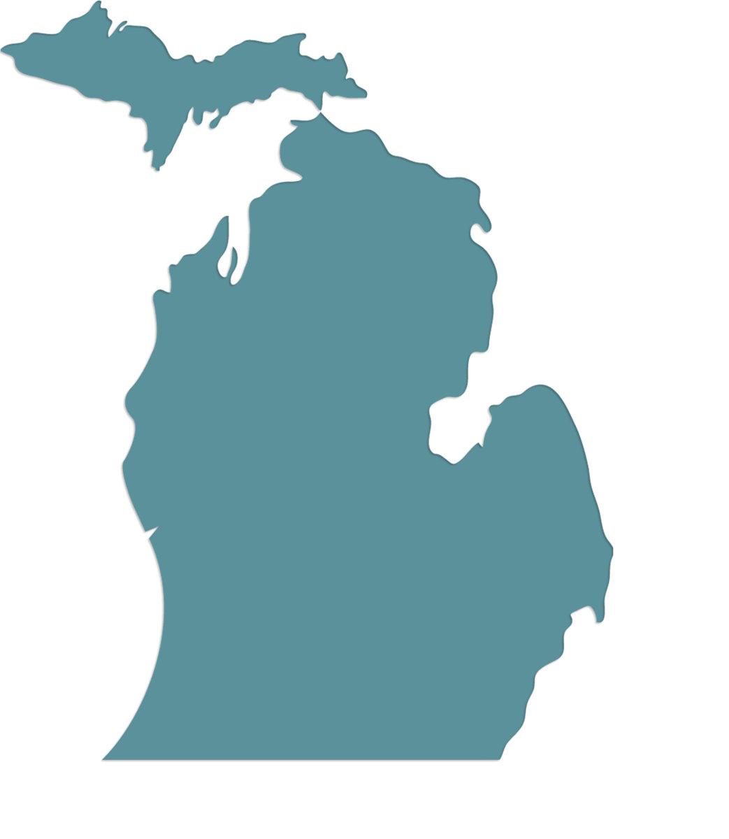1043x1200 In Michigan Those Willows