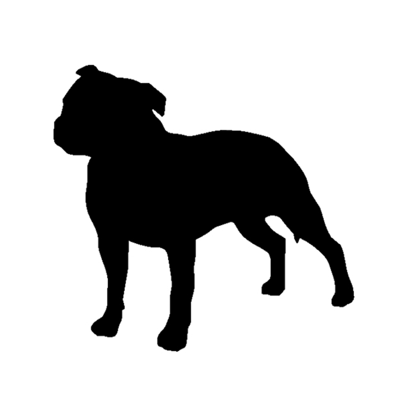 800x800 Pitbull Clipart Shadow