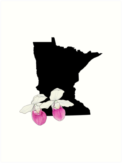 413x549 Minnesota Silhouette And Flowers Art Prints By Ursularodgers