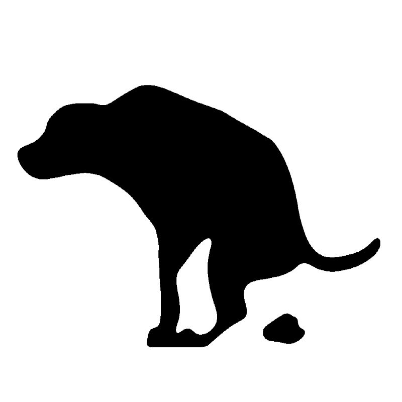 800x800 Dog Poop Dna Service Aims To Clean Up Minnesota Dog Owners' Bad