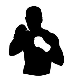294x330 Mma Fighter 2 Decal Sticker