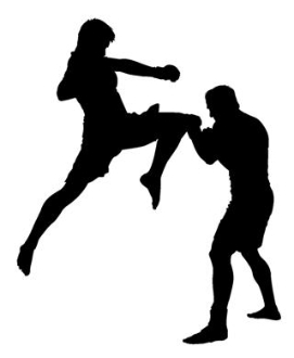 271x330 Mma Flying Knee Decal Sticker