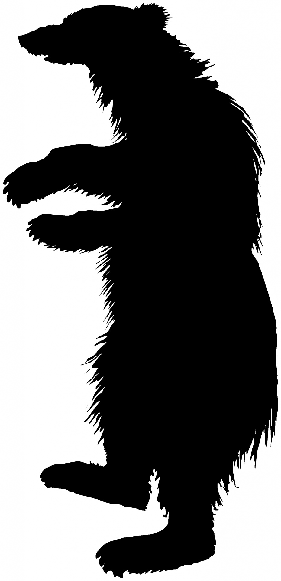 930x1920 Silhouette Of An Animal Free Stock Photo