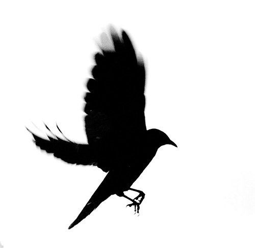 500x487 Birds Flying Away Silhouette Line Bird Clipart Library