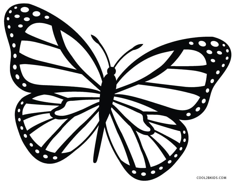 800x628 Monarch Butterfly Coloring Pages Free Printable Butterfly Coloring