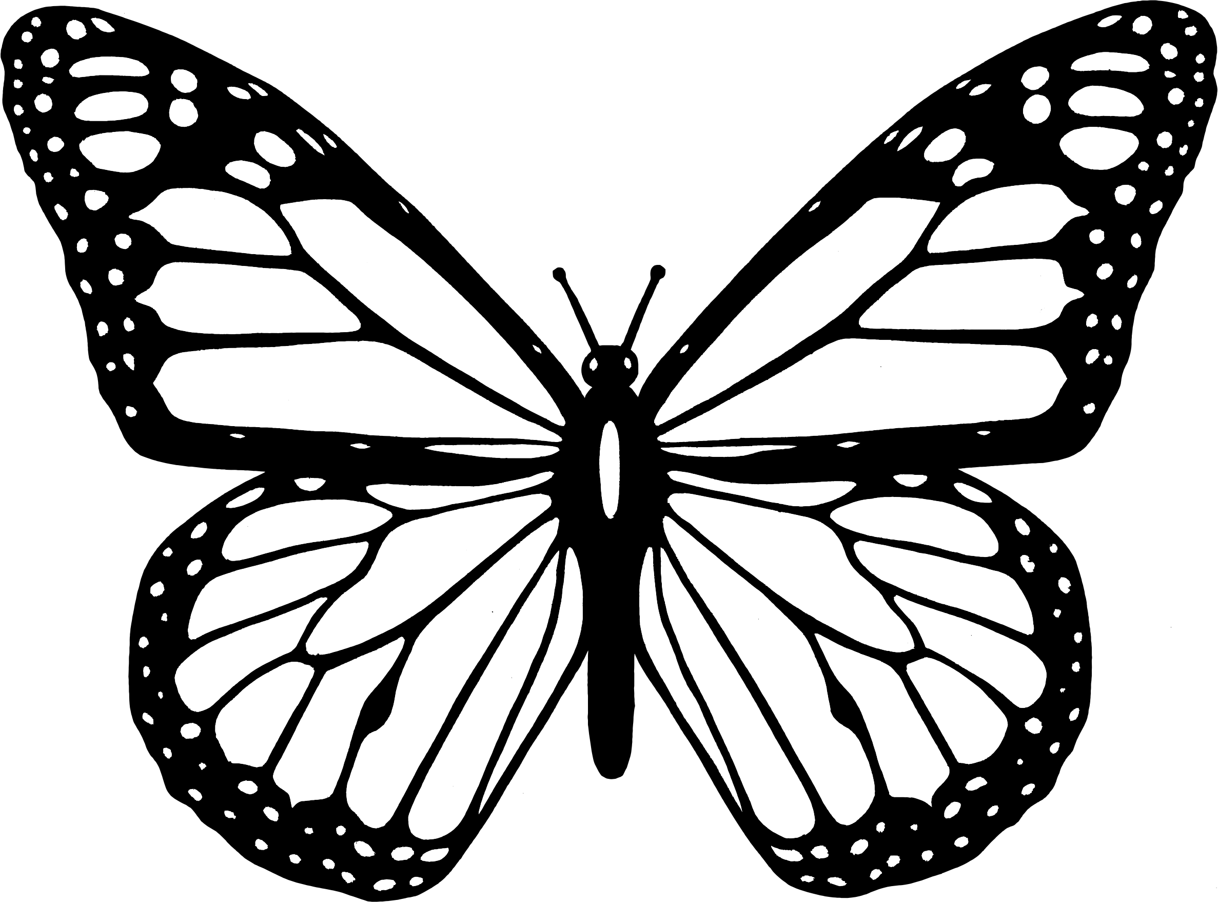 monarch butterfly silhouette at getdrawings com free for personal rh getdrawings com monarch butterfly clipart images monarch butterfly clip art free