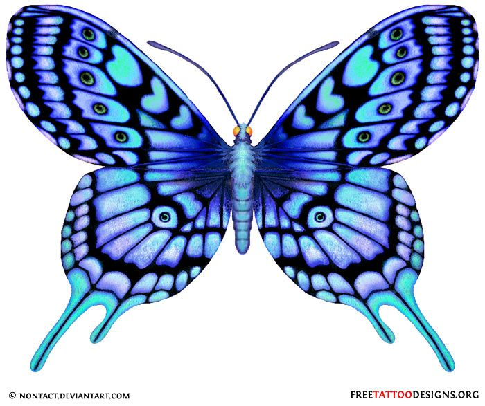 700x587 Blue Butterfly Drawing Blue Tattoo 60 Butterfly Tattoos
