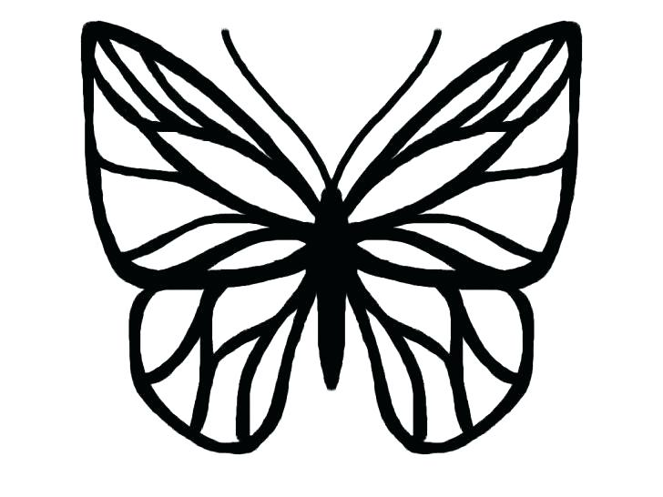 728x546 Template Simple Butterfly Template