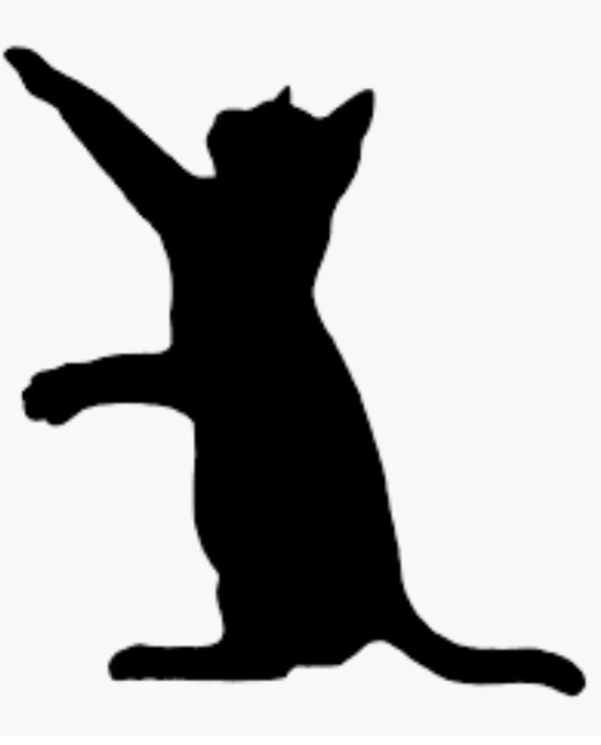 856x1061 Cat Silhouette Painted Rock Idea Rock Painting Ideas