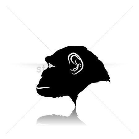 450x450 Free Monkey Face Stock Vectors Stockunlimited