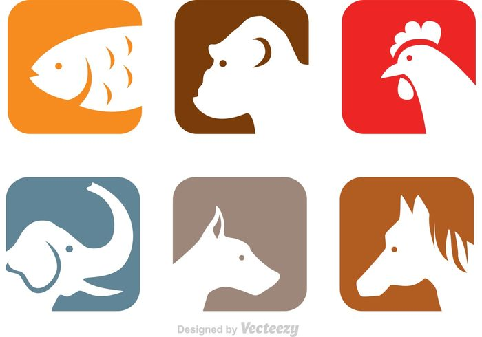700x490 Animals Head Icons 146088