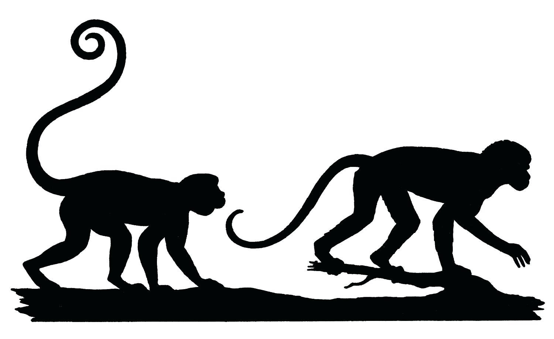 Monkey Silhouette Clip Art