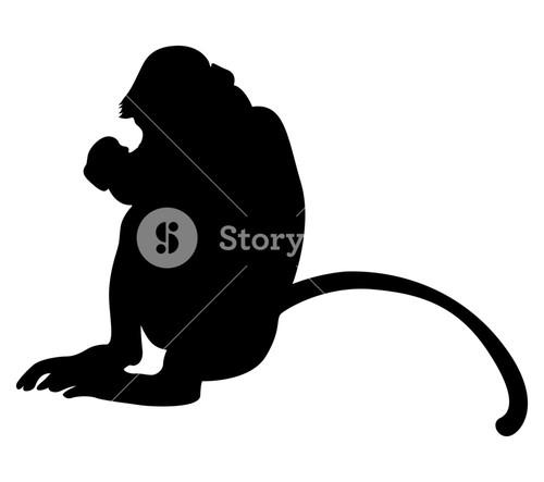 500x443 Monkey Shape Royalty Free Stock Image
