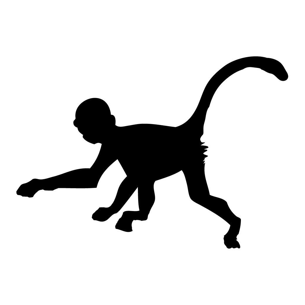 1042x1042 Monkey silhouette Silhouettes Pinterest Silhouette