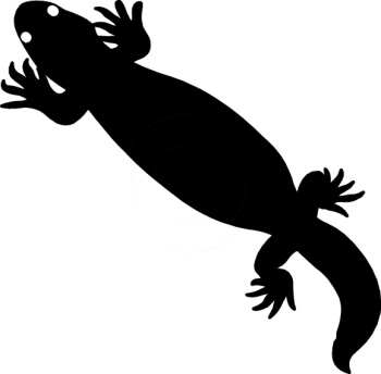350x344 Silhouettes Clipart Gila Monster Silhouette 14