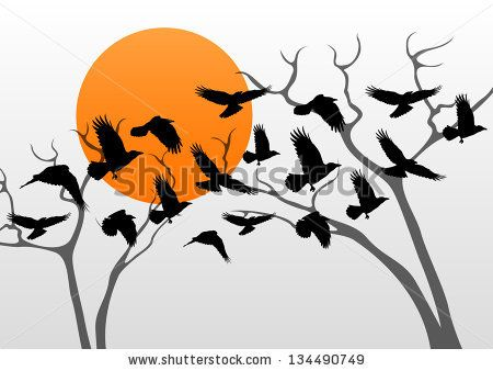 450x338 Dark Crows Pack Flying Over Scary Halloween Night Moon Lighted