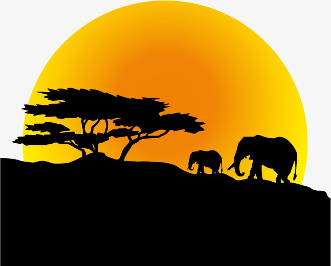 647x520 Vector Elephants Silhouette Moon, Elephant, Moon, Trees Png