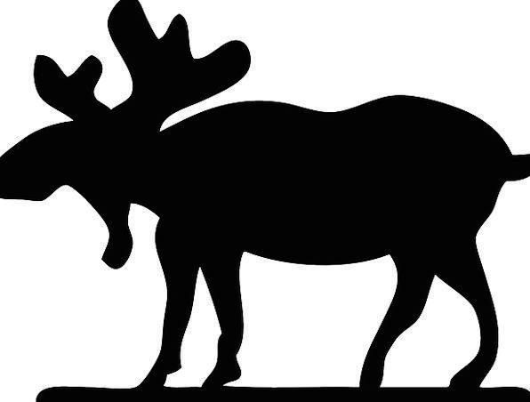596x452 Moose, Physical, Mammal, Creature, Animal, Silhouette, Outline