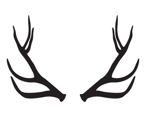 300x240 Search Photos Moose Silhouette