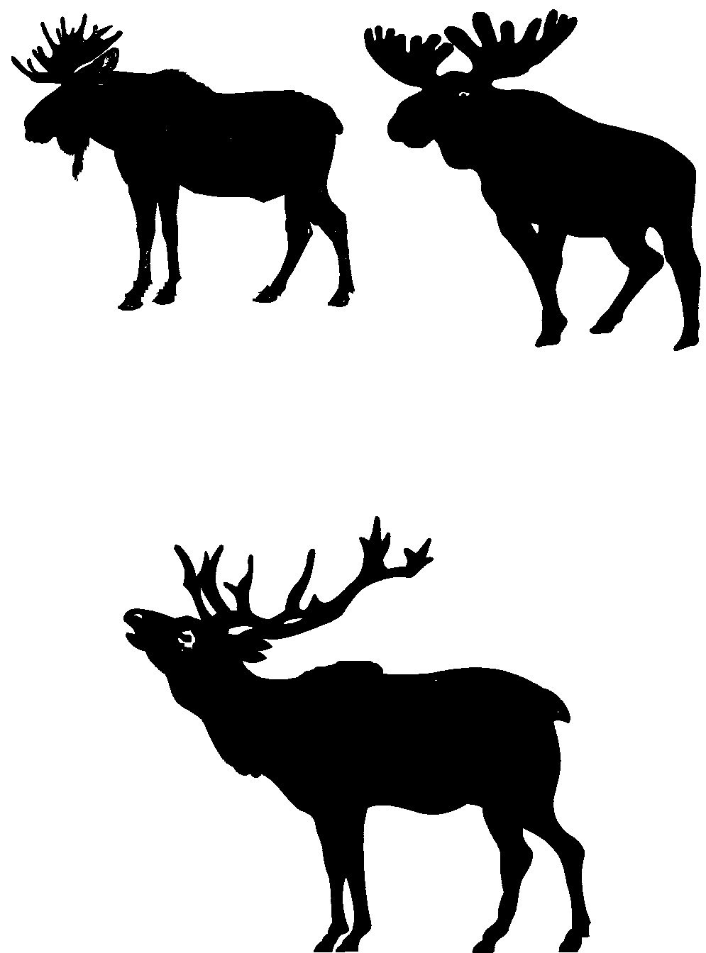 995x1344 Moose Silhouettes Art Silhouette And Moose