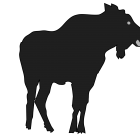 140x140 Moose Silhouette Animal Free Black White Clipart Images