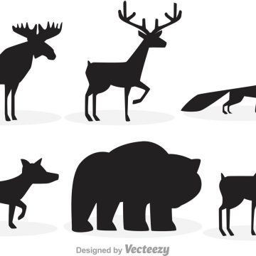 360x360 Moose Archives Page 2 Of 2 My Graphic Hunt