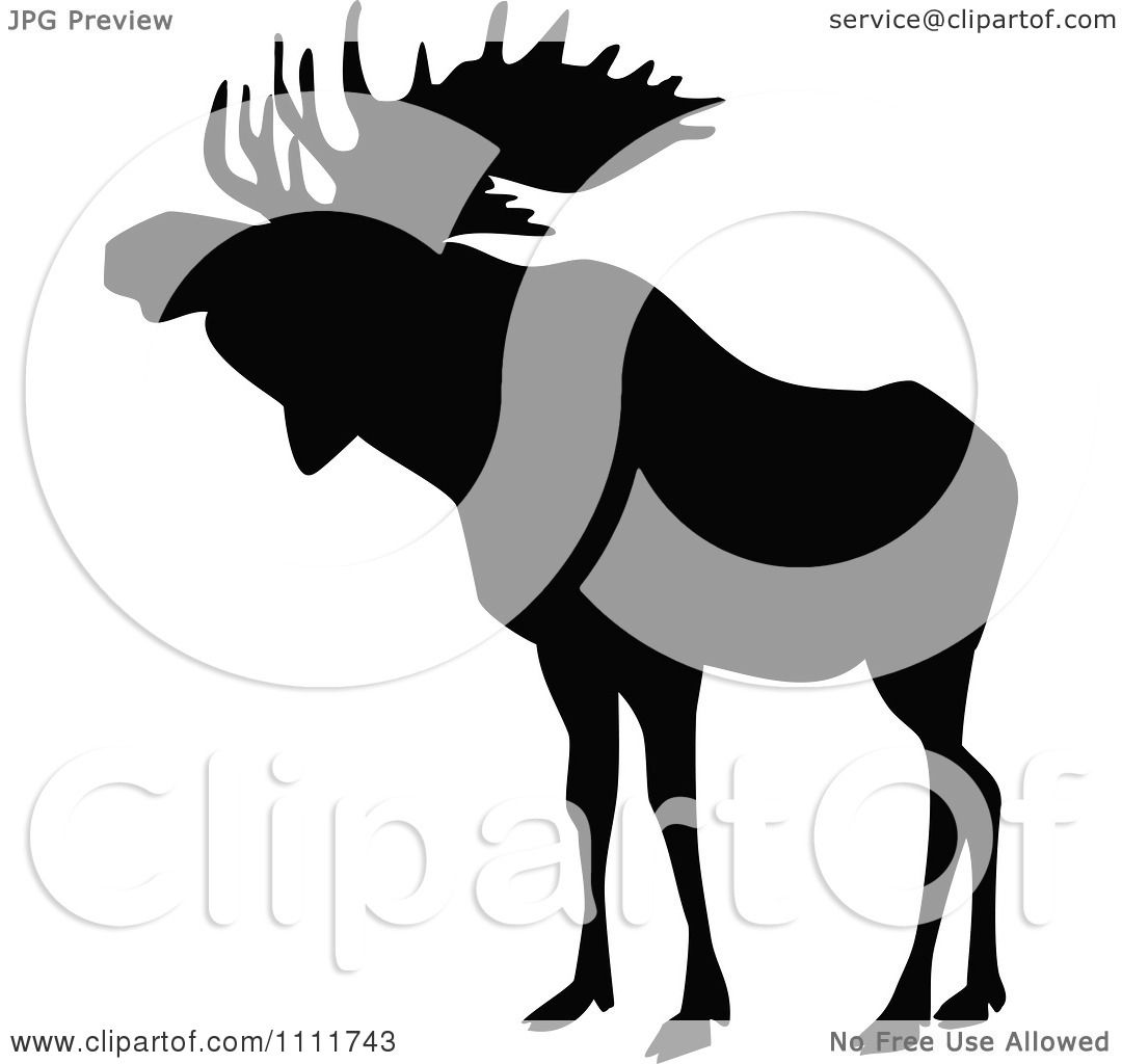 1080x1024 Clipart Silhouetted Moose In Black And White 1
