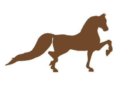 Morgan Horse Silhouette