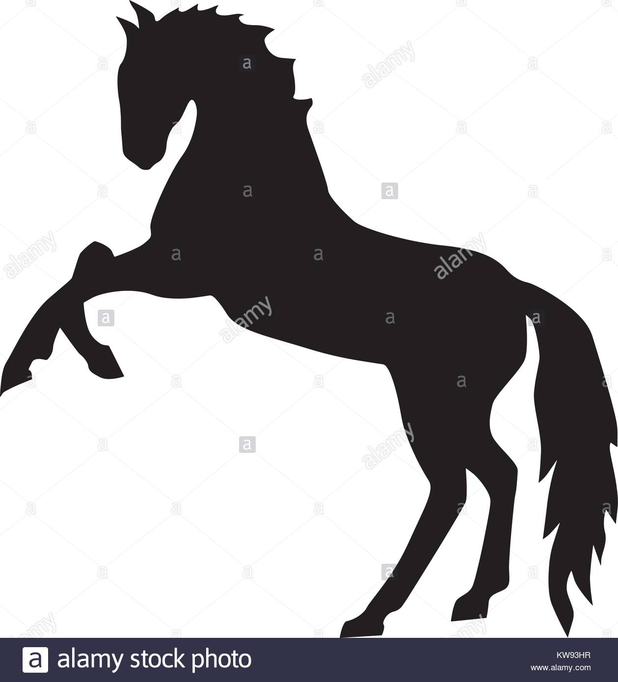 1259x1390 Head Horse Silhouette Stock Photos Amp Head Horse Silhouette Stock