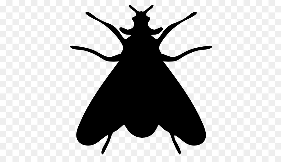 900x520 Insect Moth Icon