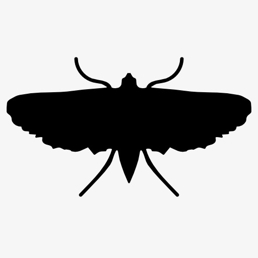 512x512 Silhouette Moths, Insect, Animal, Projection Png Image And Clipart