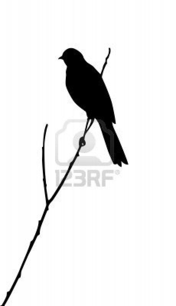 690x1200 Silhouette Of The Bird On White Background Rv Stencils