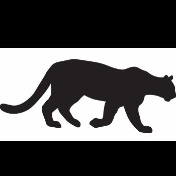350x350 Mountain Lion Icon