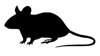 320x179 Mouse Silhouette 2 Decal Sticker
