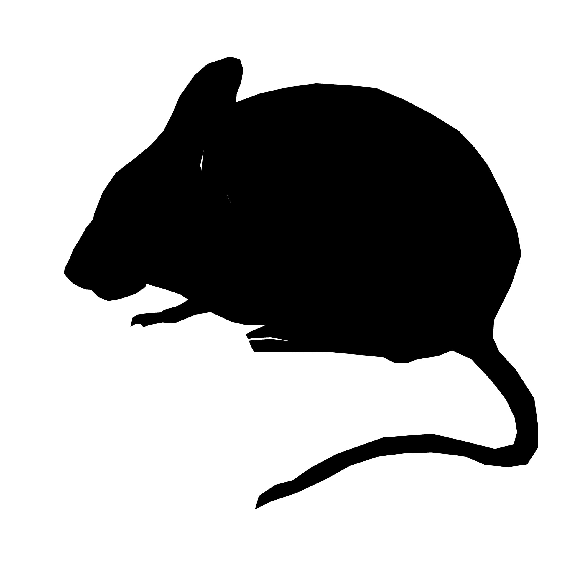 1920x1920 Silhouette Mouse Sitting Free Stock Photo