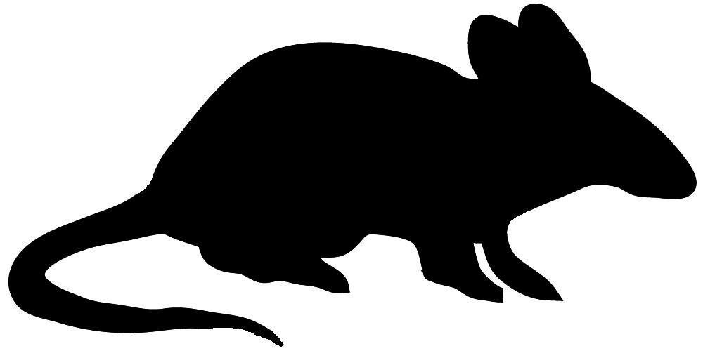 1000x510 Animal Silhouette, Silhouette Clip Art