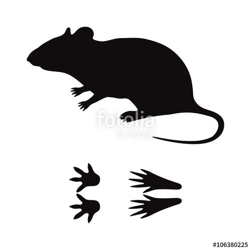 Mouse Silhouette Vector