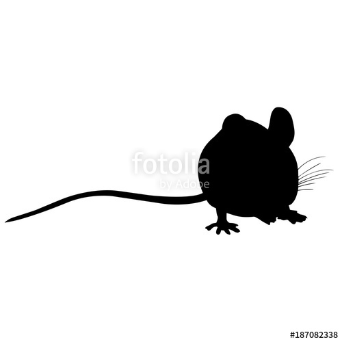 500x500 Mouse Silhouette Vector Graphics Stock Image And Royalty Free