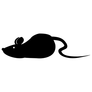 300x300 Mouse Clipart, Cliparts Of Mouse Free Download (Wmf, Eps, Emf, Svg