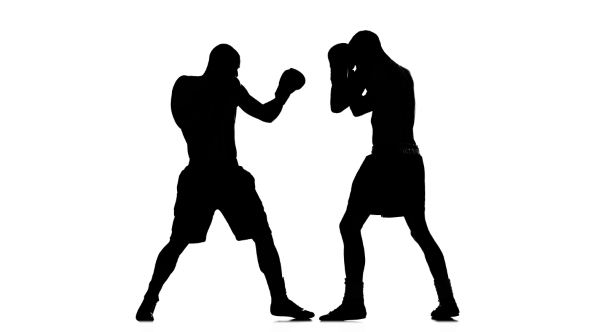 590x332 Training Between Two Sportsmen Boxers Men. Silhouette By Kinomaster