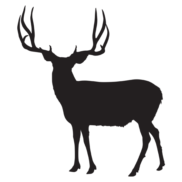 600x600 Hunts Antler Canyon Outfitters