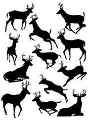 180x249 Mule Deer Silhouette Clip Art
