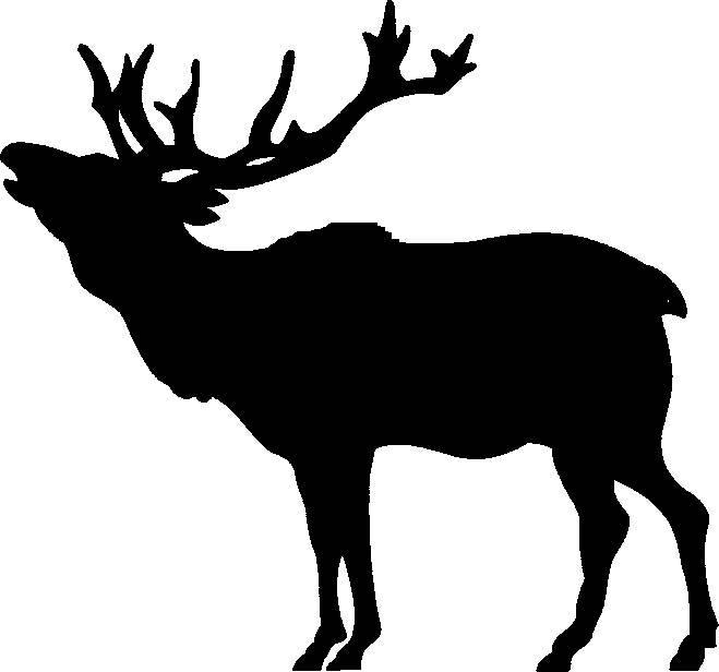 659x616 Deer Species Clipart