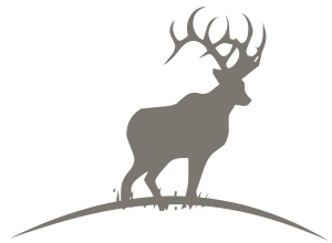 300x220 Montana And Wyoming Big Game Hunt