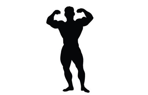 480x309 Silhouette Clipart Bodybuilder Many Interesting Cliparts