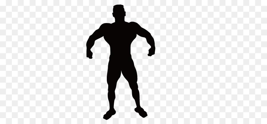 900x420 Vitruvian Man Silhouette Muscle Clip Art