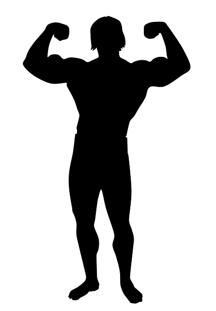 446x640 Free Photo Male Silhouette Academy Muscle Bodybuilding